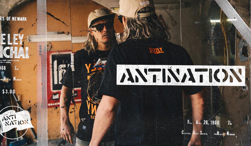 antilook2.jpg