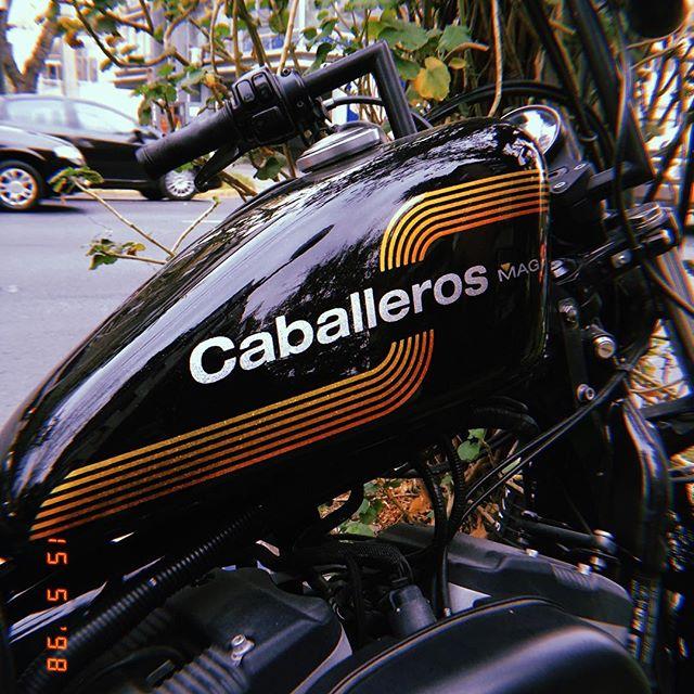 @caballerosmag 🏁🔥💨 con todo 🔥🔥🔥 increible trabajo de pintura x @pinturas_especiales #kustom #kustompaint #caballerosmag #ccsm #sporster #harleydavidson #tank #amf #motorcycle #sporster883 #chile
