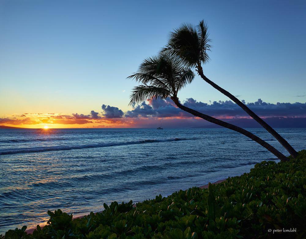 Maui, HI Alpa STC•IQ140•SK 35XL