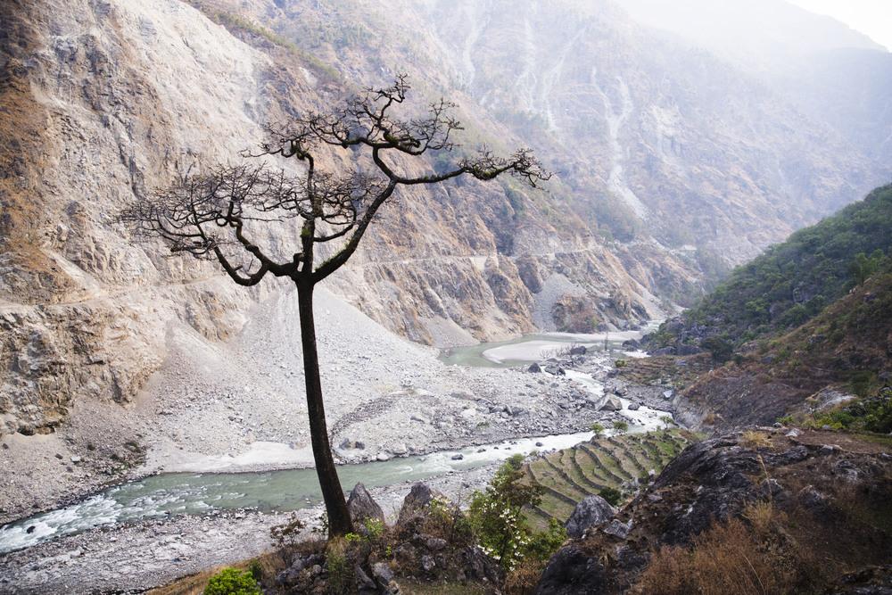nepal_lineharklau_11.jpg