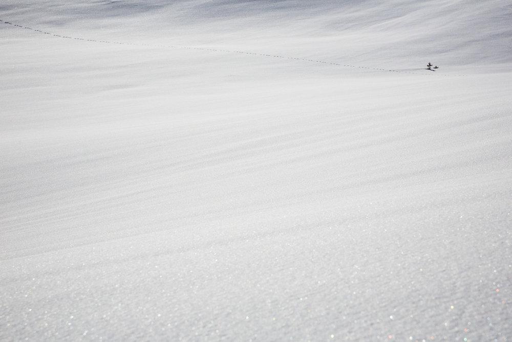 jølster påska 2017.jpg