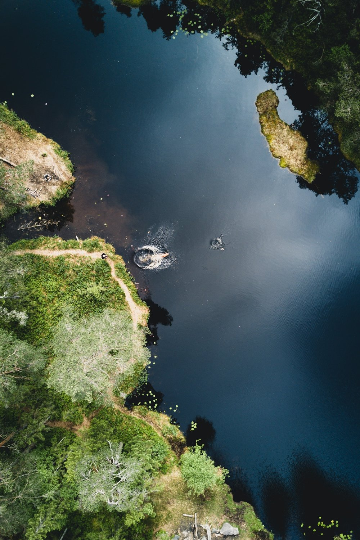 drone 26.06.17-11.jpg