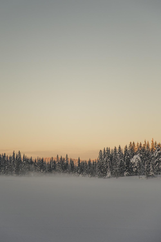 fjellskitur marka-2.jpg