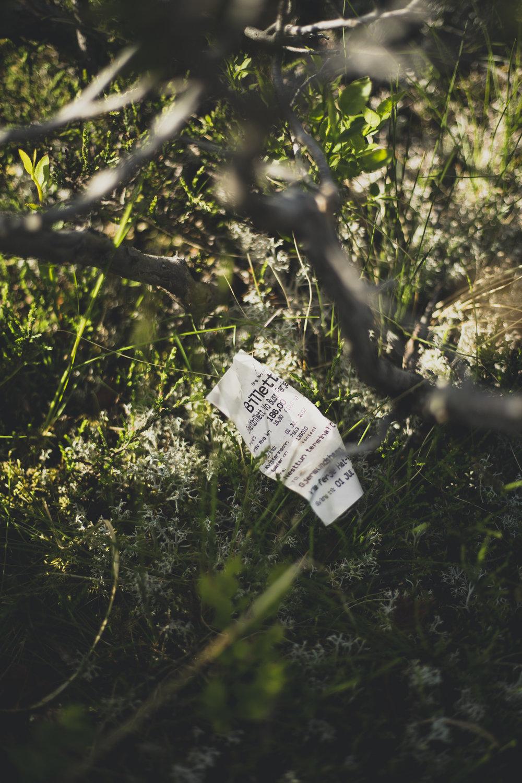 trail trolltunga-14.jpg