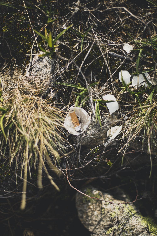 trail trolltunga-17.jpg