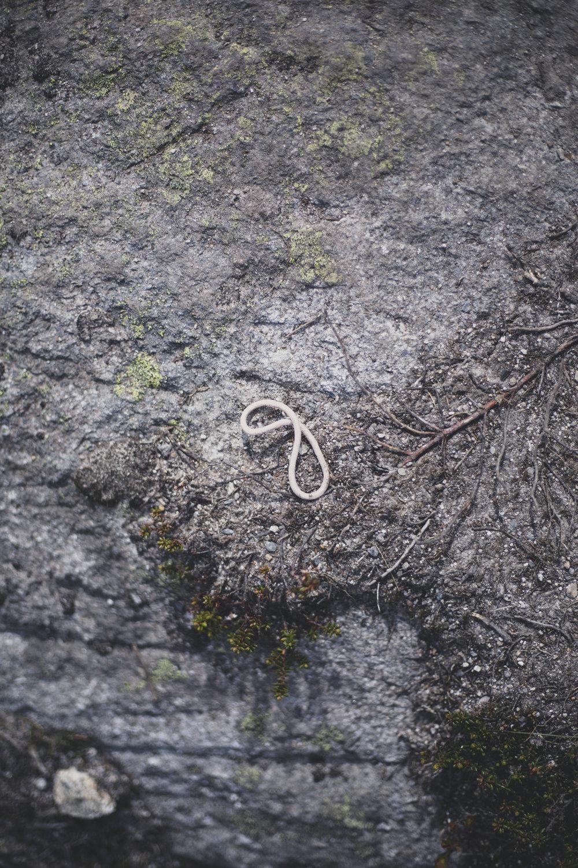 trail trolltunga-42.jpg