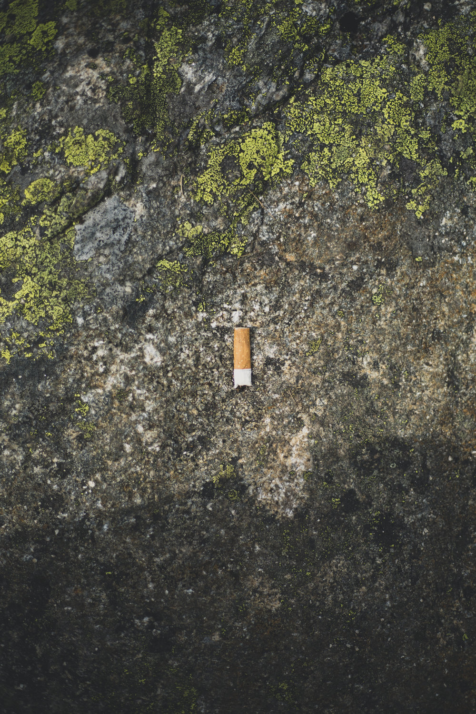 trail trolltunga-47.jpg