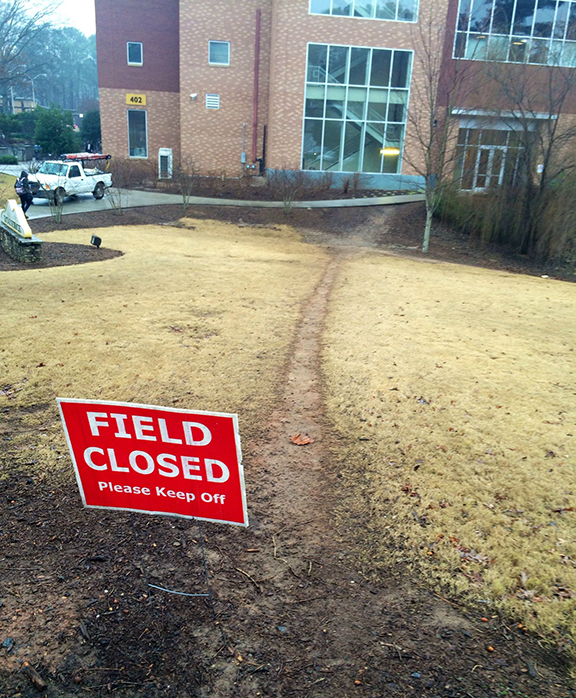field_closed copy.jpg
