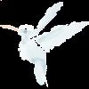 debra schaffer hummingbird