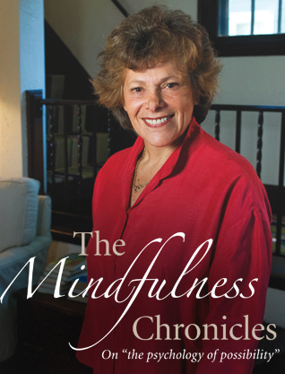 The Mindfulness Chronicles