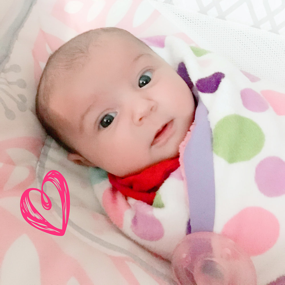 Baby Update! - Nothing makes us happier than seeing beautiful little Mosie Babies!