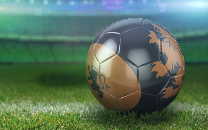 soccer ball - holland.jpg
