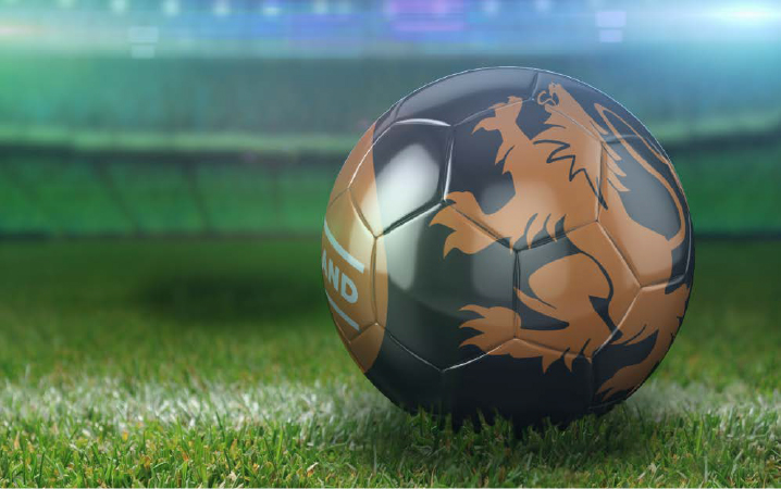 soccer ball - holland2.jpg
