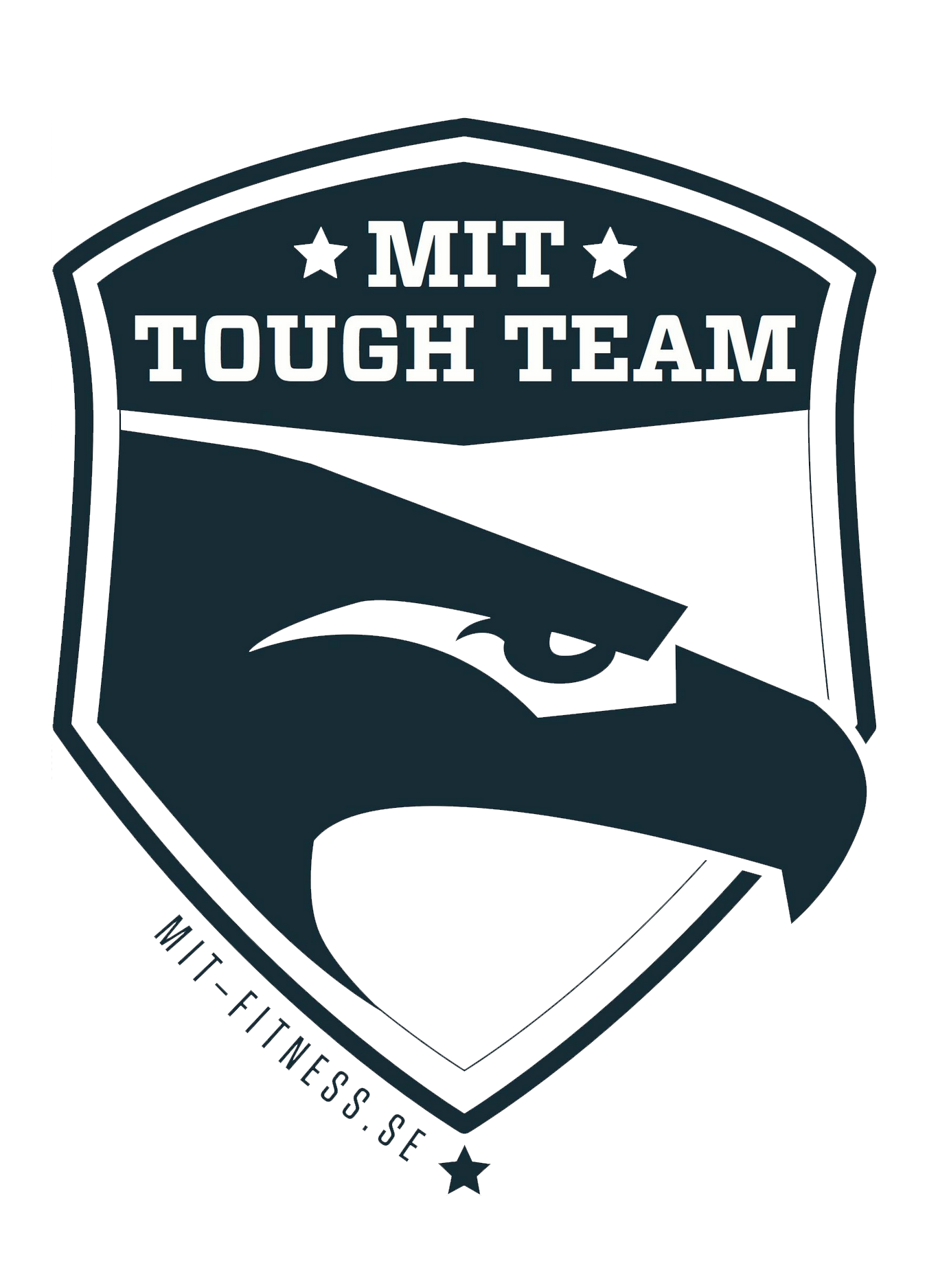 MIT tough team