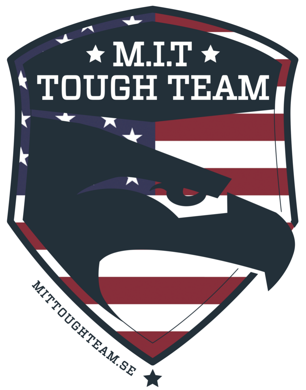 Join MIT USA