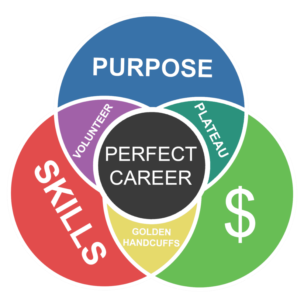 Perfect+career+diagram+new.png