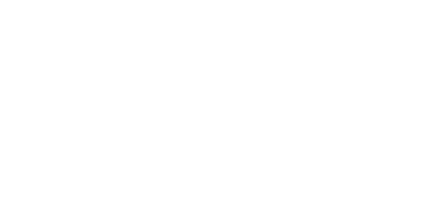 ChrisJames, CEO