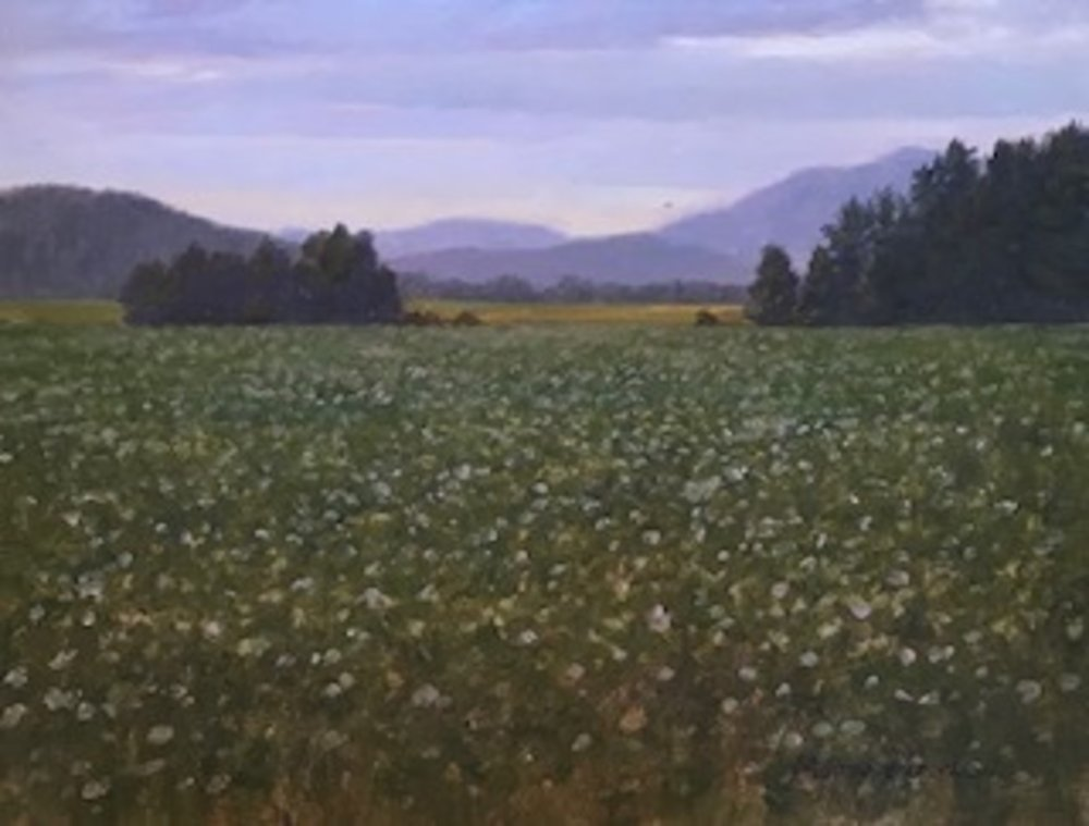 MT.16x20.meadow.jpg