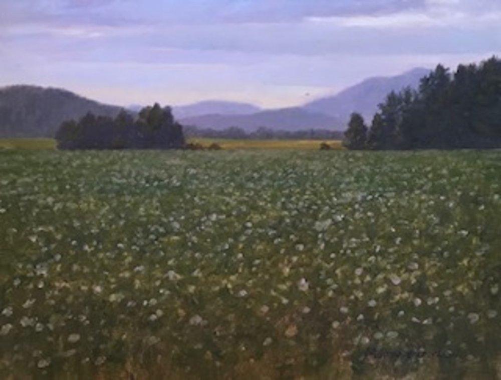 MT.16x20.meadow.jpg
