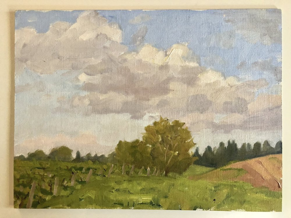 MT.Tree&Field.jpg