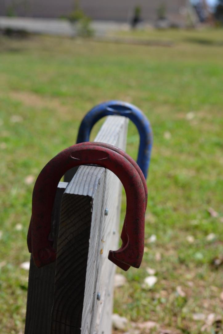 Horse Shoes.jpg