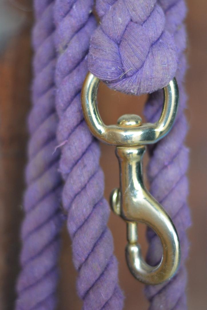 lead rope.jpg