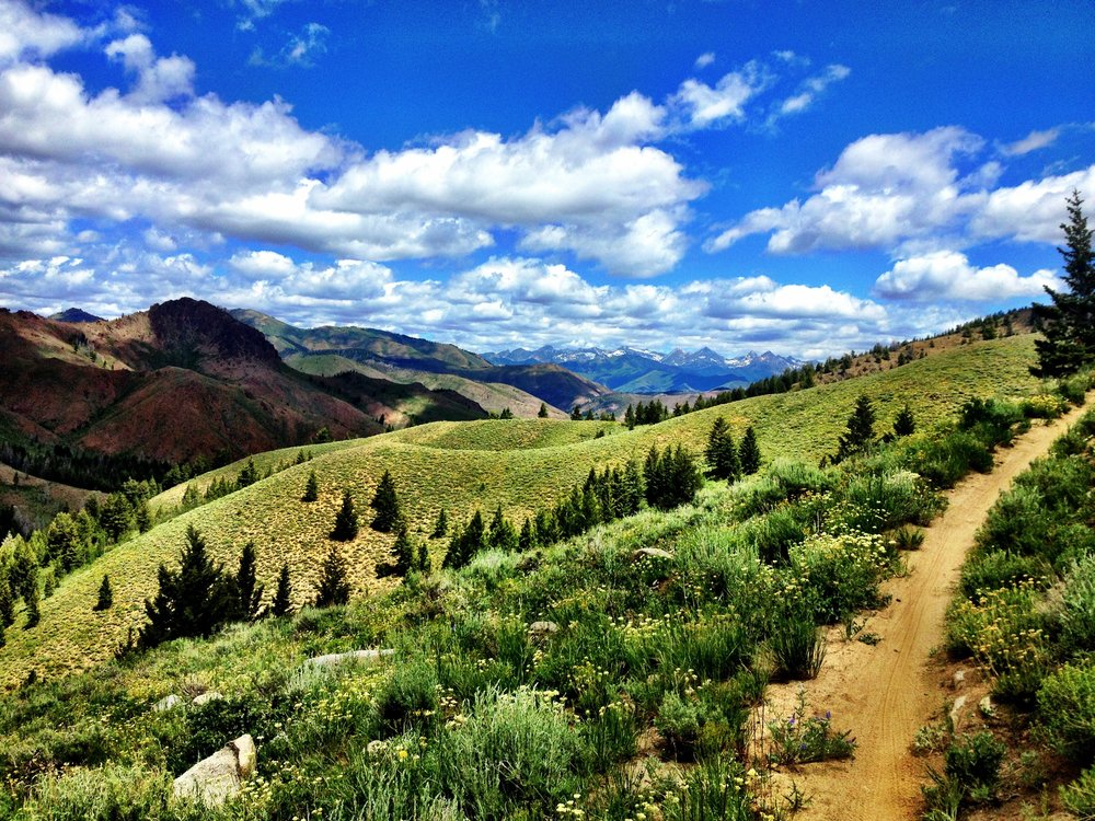 Sun Valley trails in the summer.