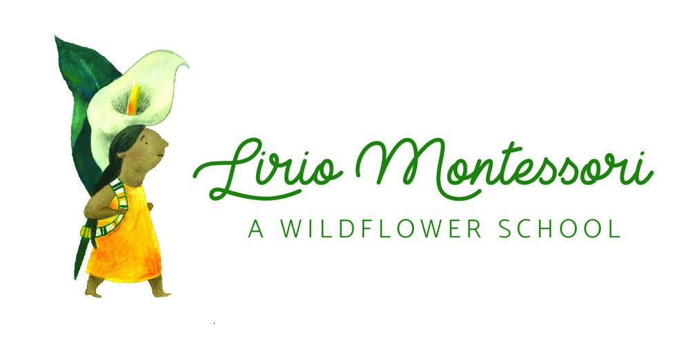 Lirio logo_horizontal-01.jpg