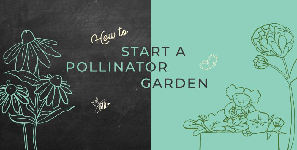pollinator garden header-01.png