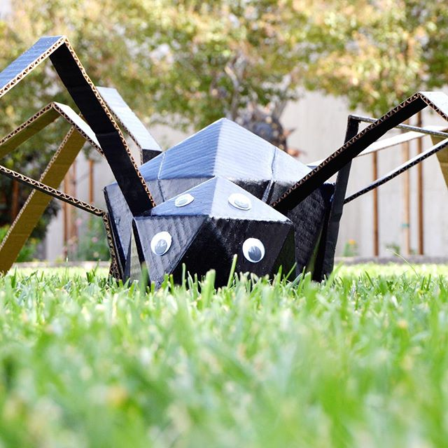 The not-so-itsy-bitsy spider crawled across the lawn. Halloween is just around the corner! Are you ready?