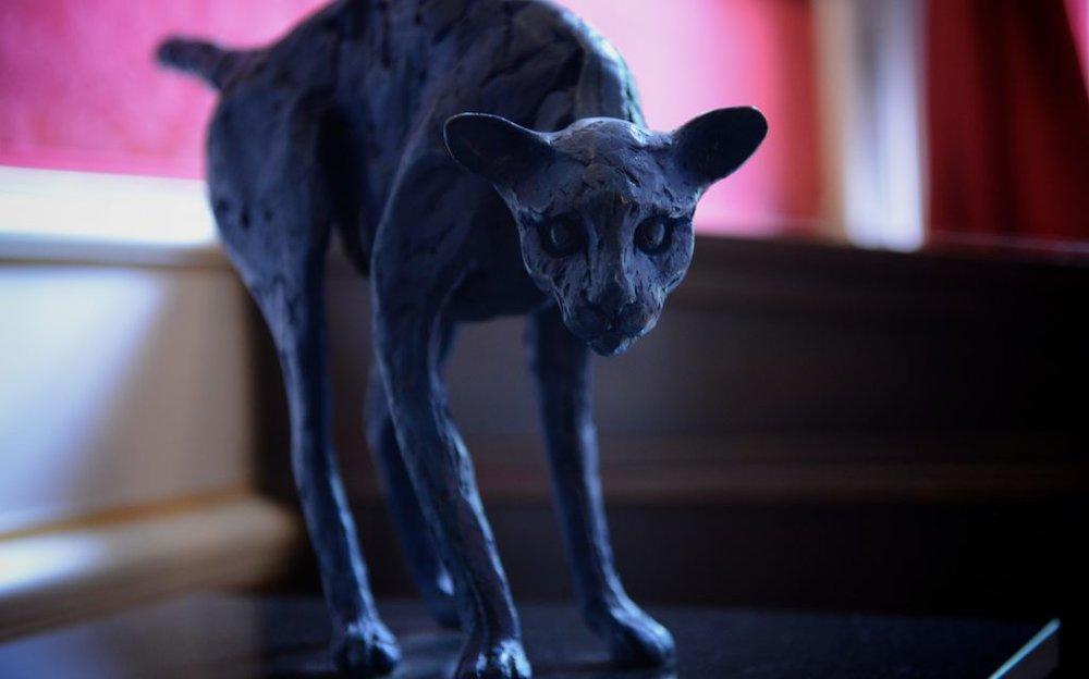kattenkabinet-bronze-cat-1024x639.jpg