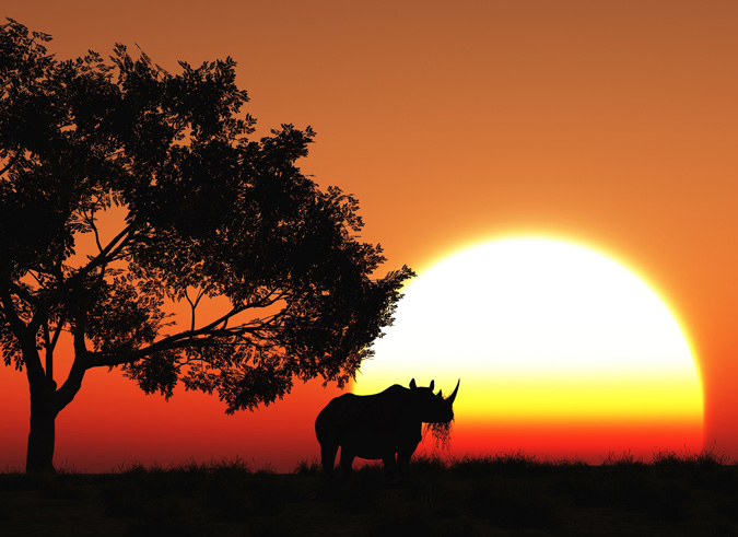 ©Heidi Venter/Africa Geographic