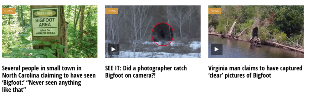 4. finding bigfoot banners.png
