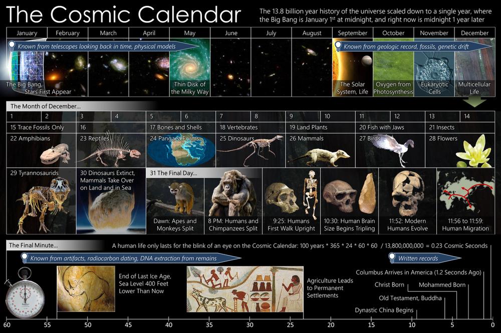 anthro1 Cosmic_Calendar.png