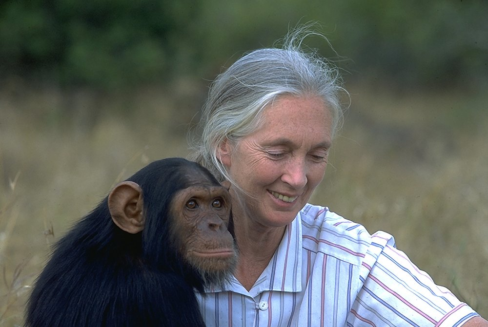 ©Jane Goodall Institute