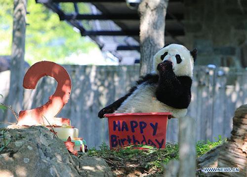 ©Scheonbrunn Zoo