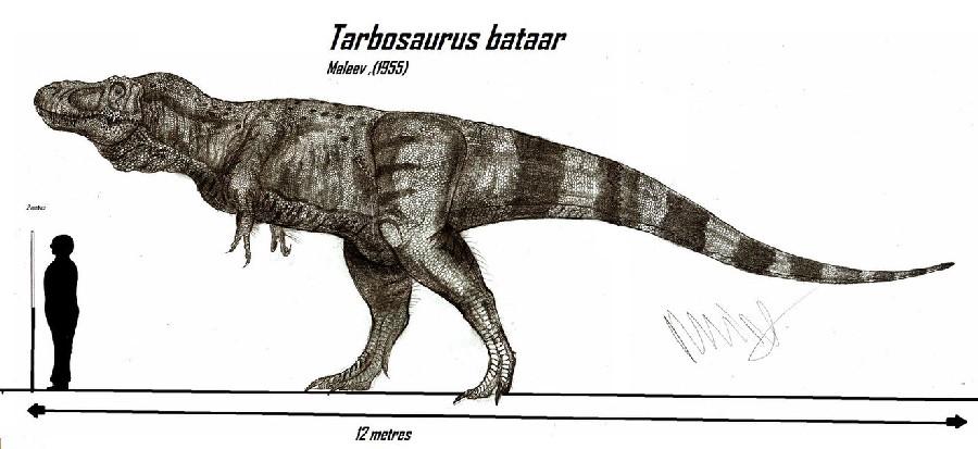 dino2 tarbosaurus DinosaurPictures.org.jpg