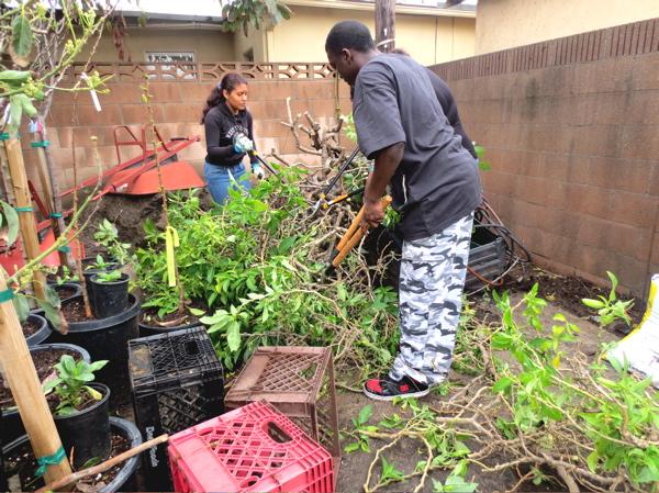 chet-planting-mar-14.jpg