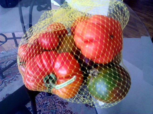 RD tomatoes Jul 13