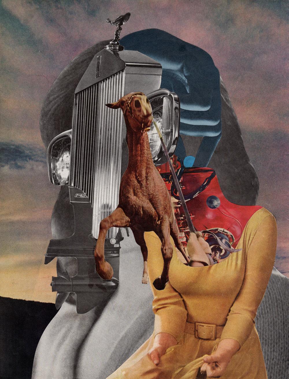 David-Delruelle-horsepower.jpg