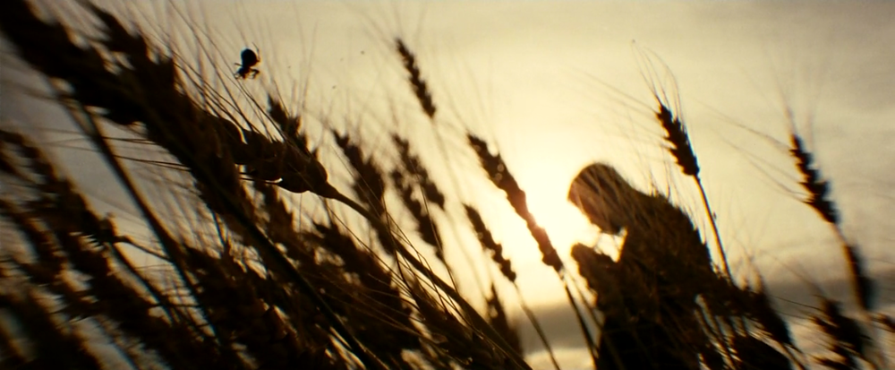 """The Assassination of Jesse James by the Coward Robert Ford"" is a haunting, beautiful film."