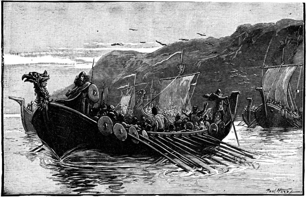 vikings-illustration.jpg