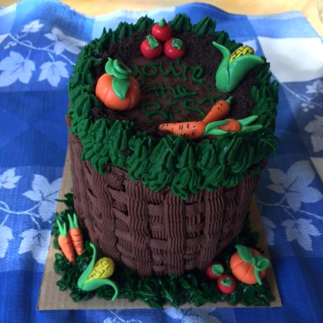 mini cake_veggie_IMG_7866.JPG