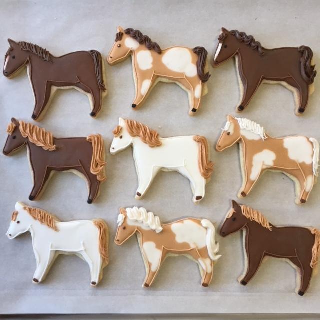 horses_IMG_8305.JPG
