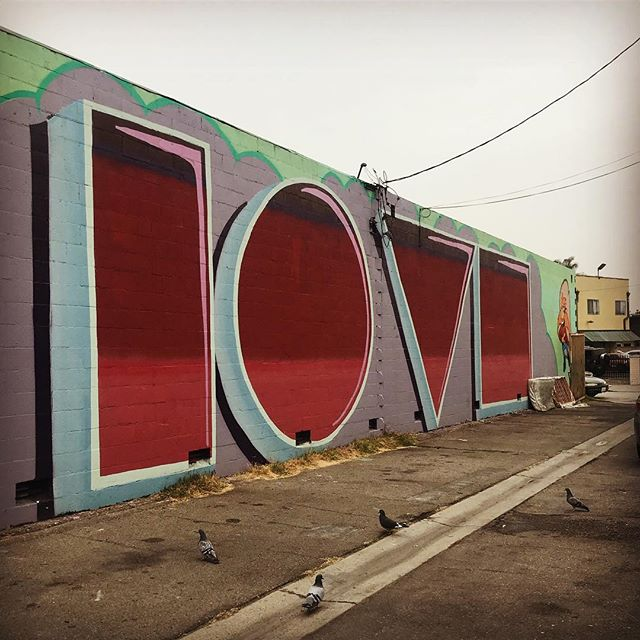 A lot like love ~ #birds #backalleys #angles #spraypaint #westadams #themusecrypt