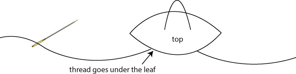 leaf_diagram.jpg