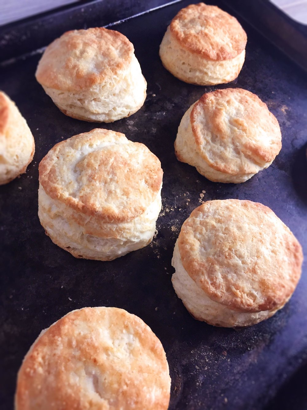 buttermilk-biscuits-super-supreme15.jpg