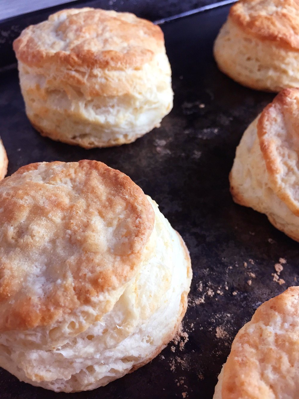 buttermilk-biscuits-super-supreme12.jpg