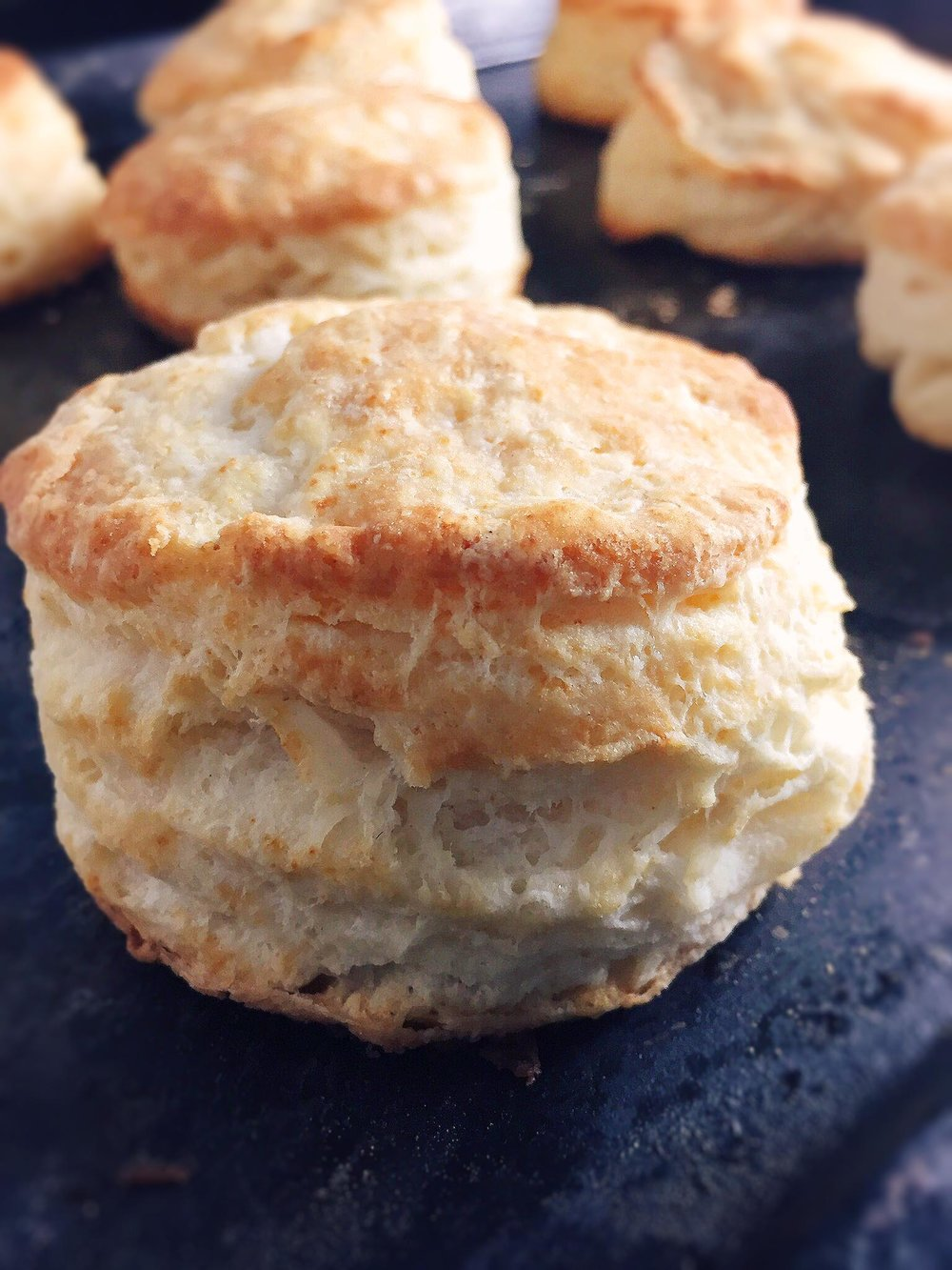 buttermilk-biscuits-super-supreme8.jpg