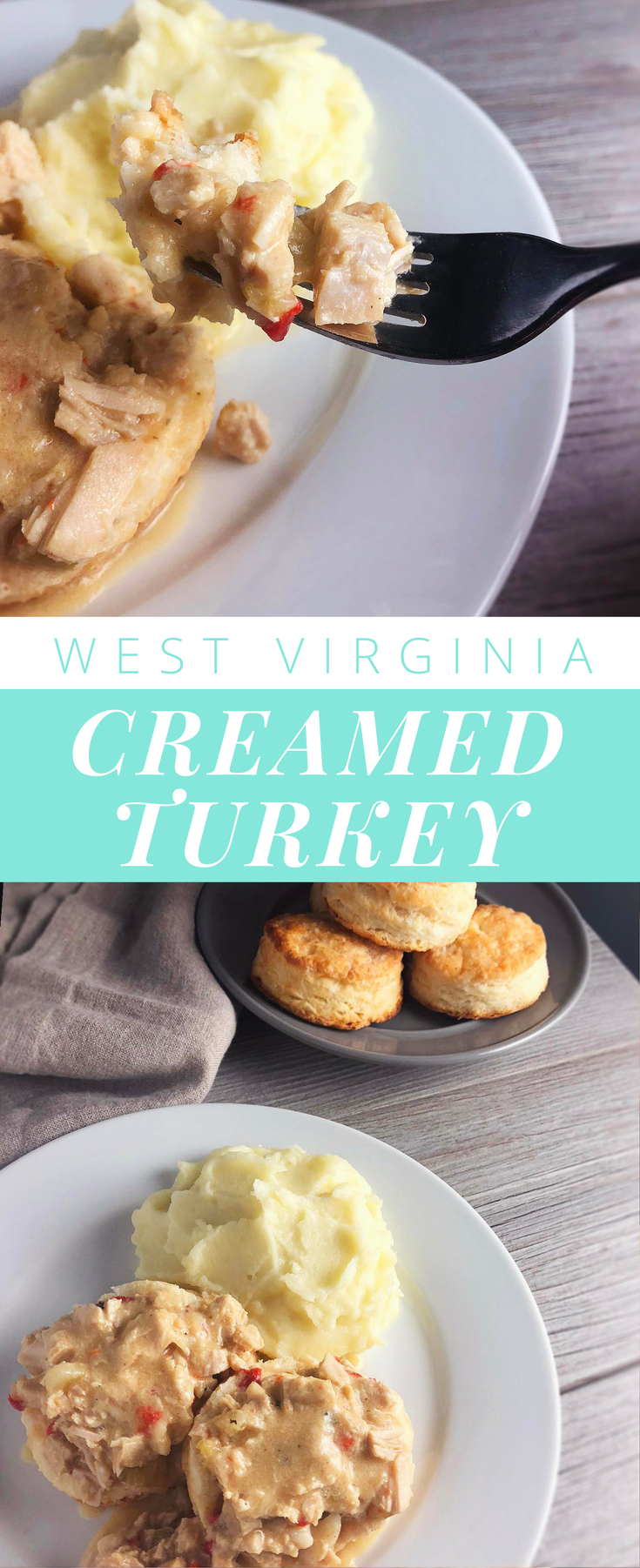 west-virginia-creamed-turkey.png